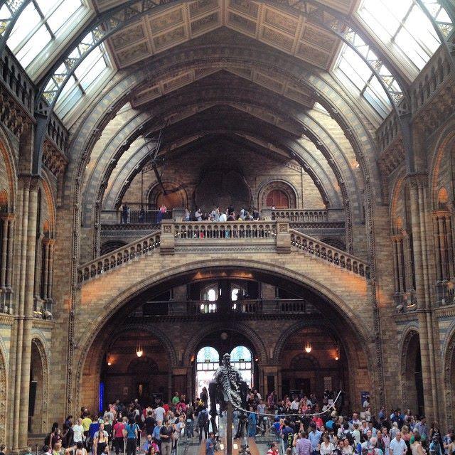 Museu de História Natural - 06 dias em Londres