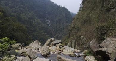 trilha em paranapiacaba