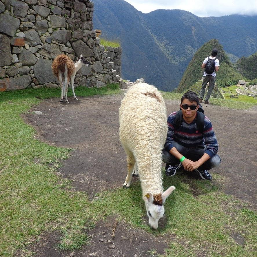 Um dia em Machu Picchu