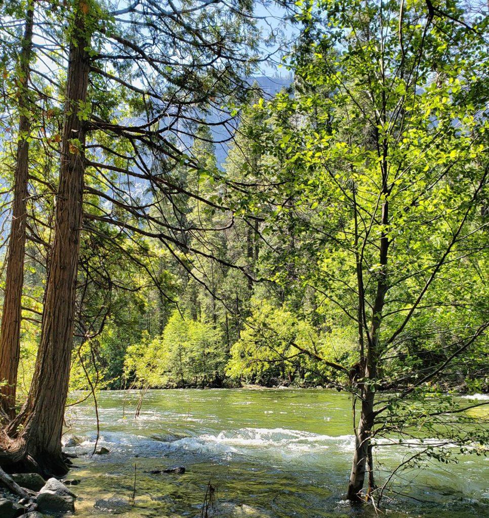 O que fazer no Parque Nacional de Yosemite