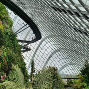 arquitetura Cloud forest