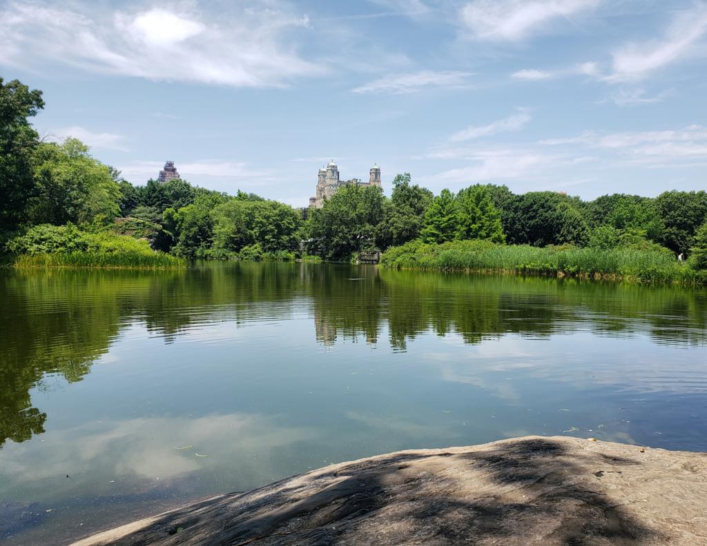 Parque em Nova York - Central Park NY