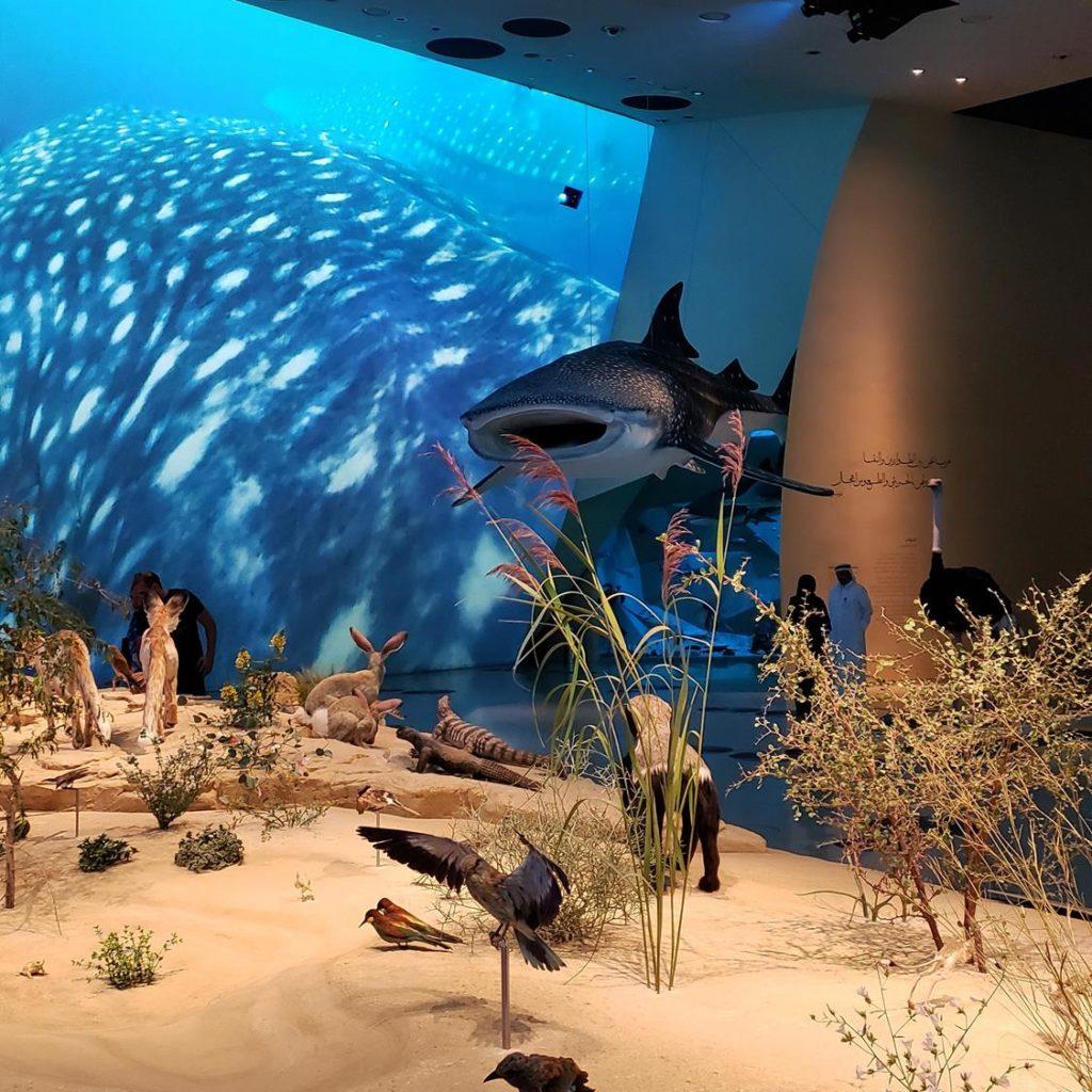 Acervo Museu Nacional do Qatar, em Doha