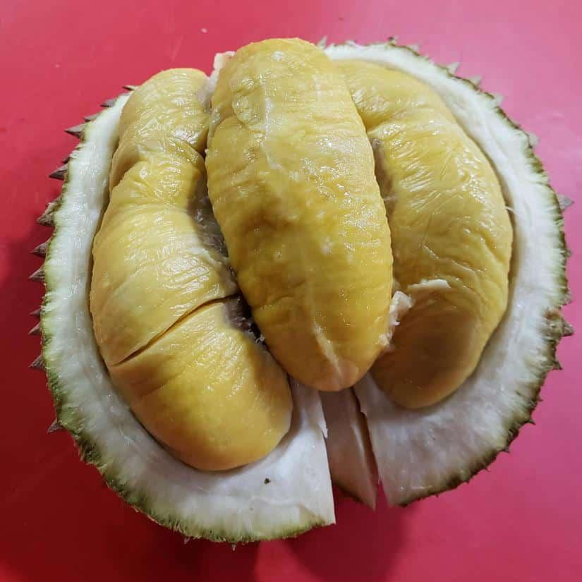 o que nao comer na malásia - durian fruit