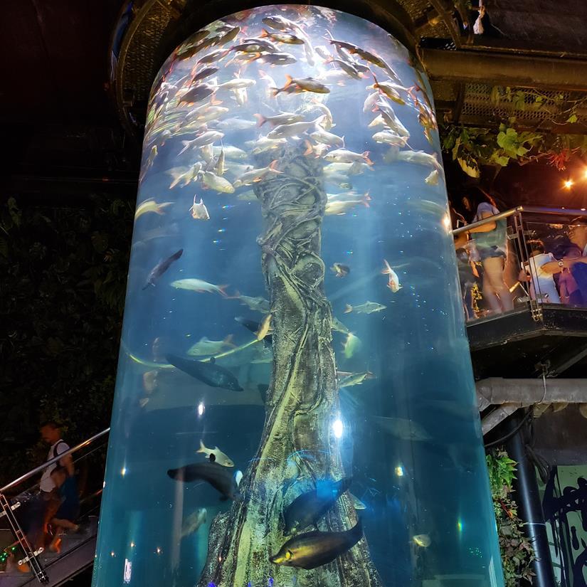 como é a visita no Aquário de Kuala Lumpur