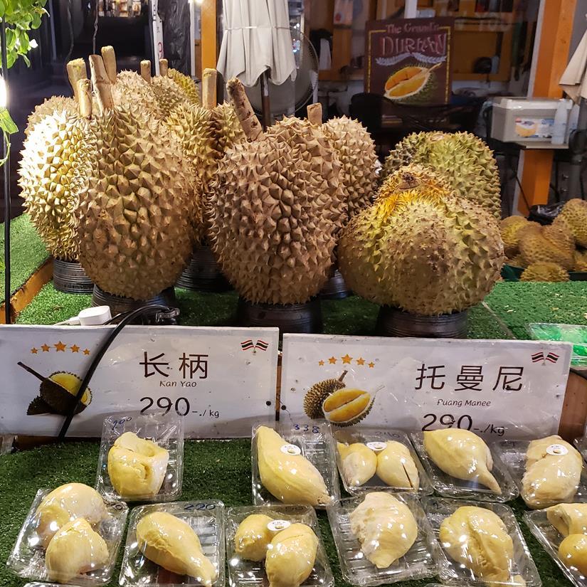 fruta durian na tailandia, fruta tipica da tailandia